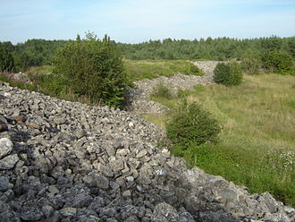 Saaremaa - Remnants of Valjala Stronghold