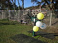 Ventnor Park outdoor fitness area launch day 6.JPG