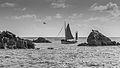 Vieux géement - Reserve des sept iles.jpg