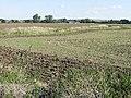 View NE across farmland - geograph.org.uk - 963173.jpg