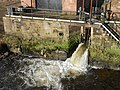 View from the River Dee at Chester (3).JPG