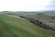 View towards Gallows Hill from Woodlands Down - geograph.org.uk - 338852.jpg