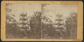 Viewing Tower, Saugerties, N., by Jernegan, E., fl. 186--187-.png