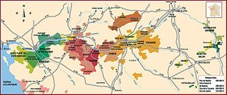 Loire Valley - Vineyard in the Loire Valley