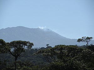 Volcan Turrialba visto desde el canopy Rainforest cerca del Braulio Carrillo 02.JPG