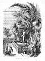 Vue intérieure grandes serres Paris 1851.jpg