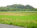 WARTBERG-SUEDSEITE-rosdorf 002.jpg