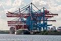 WPAhoi, Container Terminal Altenwerder, Hamburg (P1080534).jpg