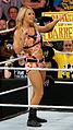 WWE 2014-04-07 19-51-21 NEX-6 1067 DxO (13929435986).jpg