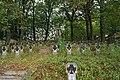 WWI, Military cemetery No. 196 Rzuchowa, Koszyce Małe village, Tarnów county, Lesser Poland Voivodeship, Poland.jpg