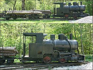 Tramway (industrial) - A replica tramway in Austria, shown in one of the most common uses, hauling logs.