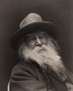 Walt Whitman - George Collins Cox.png