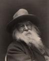Walt Whitman - George Collins Cox.png