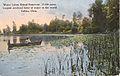 Water Lilies, Grand Reservoir (16100541287).jpg