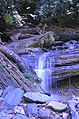 Waterfall - a way into the forest.JPG