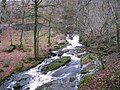 Waterfalls at Cloghleagh - geograph.org.uk - 303592.jpg