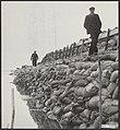 Watersnood 1953. Aan de wandel op Tholen langs de nieuwe zeedijk tussen Sint Ann, Bestanddeelnr 059-1270.jpg