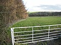 Wear Valley - geograph.org.uk - 351779.jpg