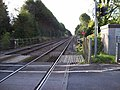 West Dean - Level Crossing - geograph.org.uk - 996659.jpg