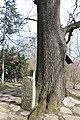 Wiki Šumadija III Spomenik knezu Stanoju 254.jpg