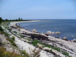 Wild beach. June, 2008 - panoramio.jpg