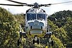 Wildcat - Fly Navy 2017 (34350602013).jpg