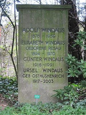 Adolf Windaus - Adolf Windaus' grave in Göttingen