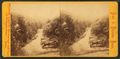 Wissahickon Valley, by Bartlett & French 2.png