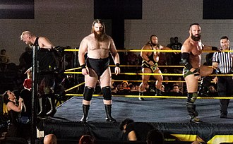 Sanity (professional wrestling) - SAnitY in 2017. In front of the ropes: Eric Young (right) and Killian Daine (left), with Alexander Wolfe on the left talking to Nikki Cross outside the ring.