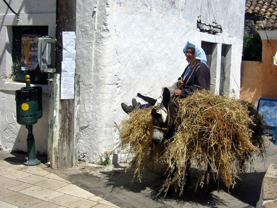 Woman Donkey Corfu(1)