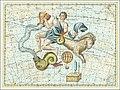 XVI. Capricornus... Coelum Stellatum.jpg