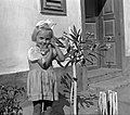 Yard, portrait, girl, ribbon, cat, flower, summer, oleander, sunshine, shadow Fortepan 14682.jpg