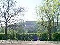 Ynysangharad Park, Pontypridd - geograph.org.uk - 421736.jpg