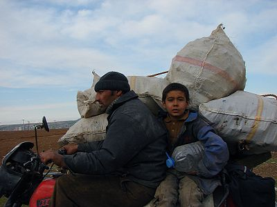 Working child near Batman, Kurdistan, Turkey.