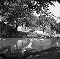 """""""Luža"""" za živino sredi vasi Reber 1957.jpg"""