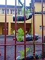 """""""Vista lateral huerto colegio José MARÍA.jpg"""".jpg"""