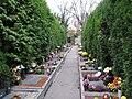 Ústřední hřbitov v Brně (6).jpg