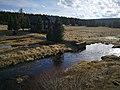 Řeka Jizerka 2.jpg