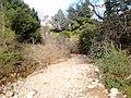 Ρέμα κοκκιναρά 2 - panoramio.jpg