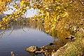 Φθινοπωρινά χρώματα στη λίμνη της Καστοριάς.jpg