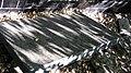 Братська могила 26 червоних бійців, загиблих під час куркульського повстання у с. Матвіївка (порушений надгробок).JPG
