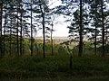 Вид чуть выше обрыва с Андроновских гор, середина сентября 2011 - panoramio.jpg