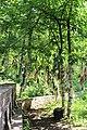 Все мы язычники. Святой ключ. Ямаш. Альметьевский р-н. РТ. Июль 2014 - panoramio.jpg