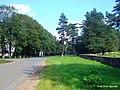 Дорога на Друю - panoramio.jpg