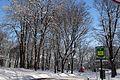 Київ, Володимирська гірка P1320930.jpg
