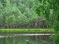 Маленькое озерцо рядом с озером Обстерно. Small lake near the lake Obsterno. - panoramio.jpg