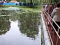 Мікрорайон Гречани, Хмельницький, Хмельницька область, Ukraine - panoramio (10).jpg