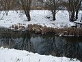 Мікрорайон Центральний, Хмельницький, Хмельницька область, Ukraine - panoramio (7).jpg