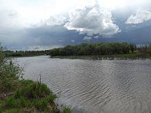 погода в циммермановке хабаровского края