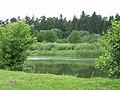 Р. Горинь біля с. Ходоси - panoramio.jpg